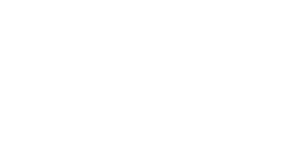 SERVICES - WHAT WE DO
